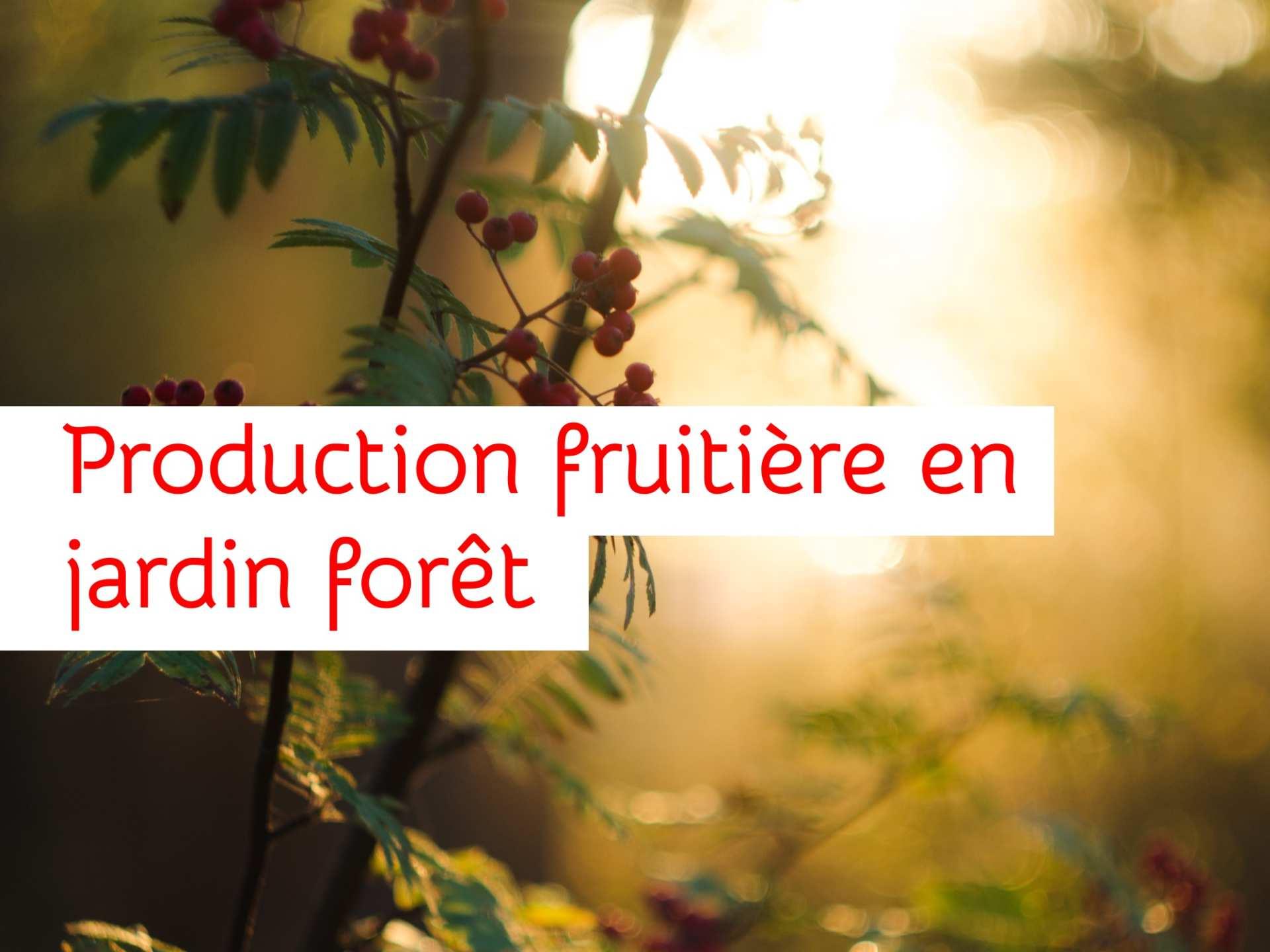 Landestini Incubateur Forêt