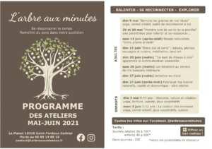 Programma mai-juin de l'arbre aux minutes